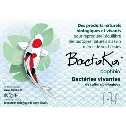 Bactokoï