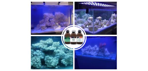 Produits de démarrage d'aquarium